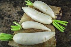 Fresh slices white radish , healthy vegatable Royalty Free Stock Photo