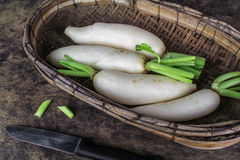 Fresh slices white radish , healthy vegatable. Fresh slices white radish on wooden background, healthy vegatable Stock Photo