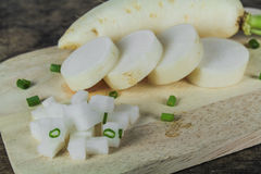 Fresh slices white radish , healthy vegatable Stock Image
