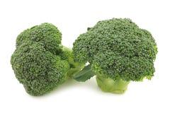 Fresh small broccoli Stock Photo