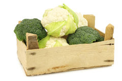 Fresh small cauliflower and broccoli in a wooden crate Stock Photography