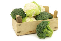 Fresh small cauliflower and broccoli in a wooden crate Stock Image