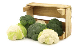 Fresh small cauliflower and broccoli in a wooden crate Royalty Free Stock Photos