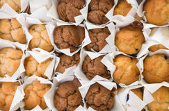 Fresh small muffins in rows Royalty Free Stock Photo