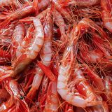 Fresh small red shrimp, seafood, carabinieri. Natural background royalty free stock photo