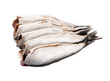 Fresh small scale fish Royalty Free Stock Photography