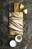 Fresh small sea fish smelt, sardine on a simple background with salt, rosemary and lemon slices. Top view. The concept. Of healthy sea food royalty free stock images