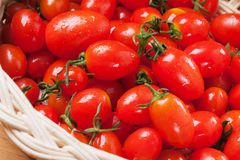 Fresh small tomato in basket Stock Photos