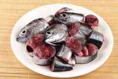 Fresh small Tuna slices. stock photos
