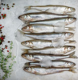 Fresh smelt for frying with spices. Small fish Stock Photo