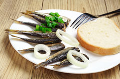 Fresh smoked sprats Stock Images