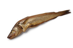 Fresh smoked whiting fish Stock Image