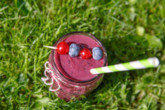 Fresh smoothie drink with different berries as healthy breakfast Royalty Free Stock Photos