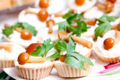 Fresh Snack from marinaded mushrooms Stock Images