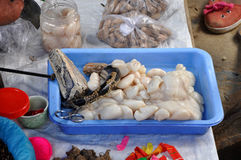 Fresh snake for sell in Bac Ha market, Vietnam Royalty Free Stock Photos