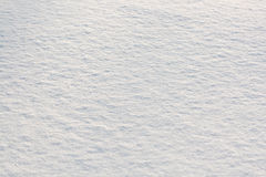 Fresh snow Royalty Free Stock Photos
