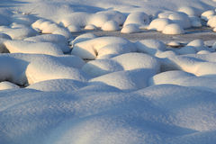 Fresh snow background royalty free stock images