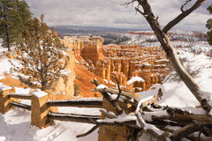 Fresh Snow Blankets Bryce Canyon Rock Formations Utah USA Stock Photography