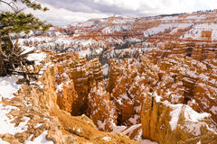 Fresh Snow Blankets Bryce Canyon Rock Formations Utah USA Royalty Free Stock Photo