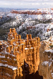 Fresh Snow Blankets Bryce Canyon Rock Formations Utah USA Stock Images