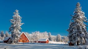 Fresh snow blankets a country Idaho farm with red barn Stock Photos