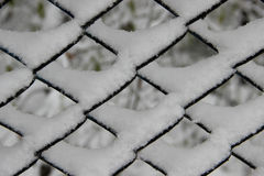 Fresh snow in cells of the mesh fence Stock Image