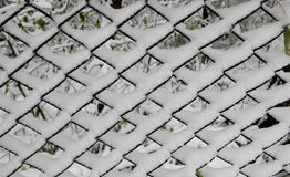Fresh snow in cells of the mesh fence Stock Images