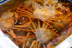 Fresh snow crabs in water. Fresh snow crabs selling in Pohang Fish Market Stock Photo