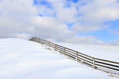 Fresh snow on a dyke in winter Stock Images