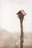 Fresh snowfall. Fresh snow falls on a birdhouse on March 19, 2013, in Junction City, Kansas Royalty Free Stock Images