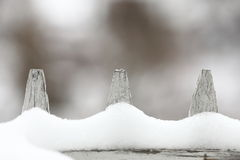 Fresh snow on a fence winter season Stock Images