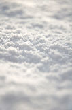 Fresh snow on the ground. Close-up of fresh snow on the ground Stock Images