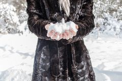 Fresh snow in the hands of a young girl. joy of winter stock images