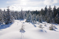 Fresh snow in the mountains Royalty Free Stock Images