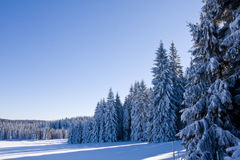 Fresh snow in the mountains Stock Photo