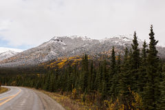 Fresh Snow on Mountains During Fall. Light dusting of snow on mountain featuring vivid greens and golds as trees turn during early fall Stock Image