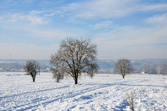 Fresh snow on plowed land Royalty Free Stock Photo