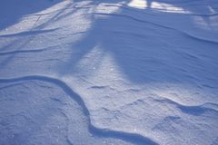Fresh snow surface in sunny winter day. Fresh snow in sunny winter day Royalty Free Stock Photos