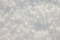 Fresh snow surface background, full-frame. Freshly fallen powdery fluffy snow surface background Stock Photography