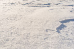 Fresh snow texture Royalty Free Stock Images