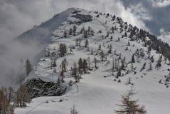 Fresh snow trail. Fresn snow trail in the mountains royalty free stock photos
