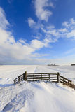 Fresh snow in winter in a field Royalty Free Stock Images