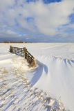 Fresh snow in winter in a field Stock Images
