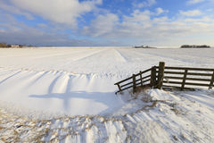 Fresh snow in winter in a field Stock Photo