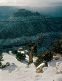 Fresh snowfall in the Grand Canyon, Arizona. There is no more beautiful mix than snow and red rock in a desert southwest winter Stock Images