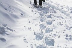 Deep snowshoe tracks being made in fresh snow stock photos