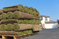 Fresh sod Stock Photography