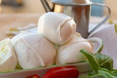Fresh soft Italian white cheese mozzarella buffalo, original fro. M Campania, Paestrum and Foggia regions, South Italy, served with tomatoes and fresh basil stock images