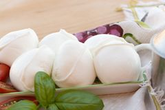 Fresh soft Italian white cheese mozzarella buffalo, original fro. M Campania, Paestrum and Foggia regions, South Italy, served with tomatoes and fresh basil royalty free stock photography
