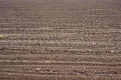 Fresh soil Stock Photos